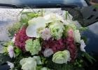Gärtnerei / Blumenladen / Baumschule / Floristik Heiko Bertholdt aus Dresden Briesnitz - Hochzeitsfloristik 21